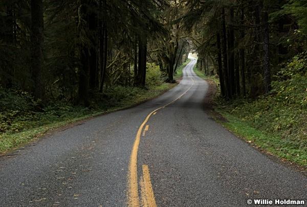 Lone Winding Road 102816 8022
