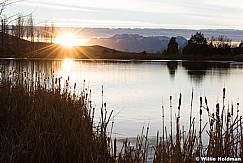 Pond 111816 5 2