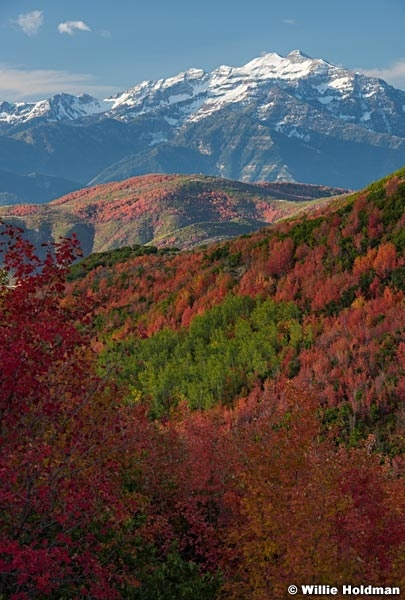 Cascade Mountain Red Maples 092917 6263