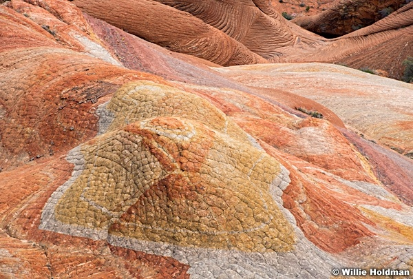 Colorful Sandstone 031520 4952