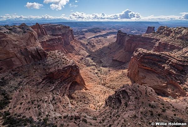 Canyonlands Overlook 032020 7378