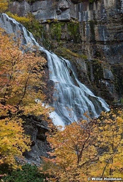 Orange Maple Leaves Waterfall 101317 1874 51