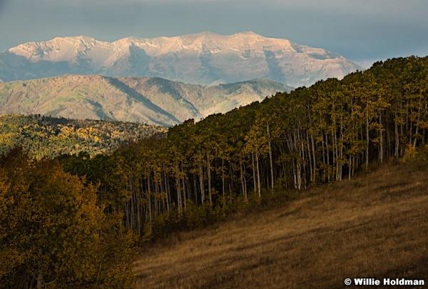 Cascade Provo Peak 100115 2