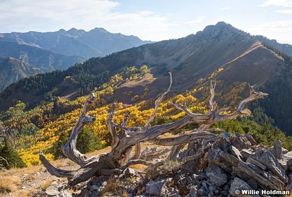 Raymond Peak 092116 1