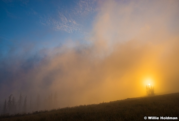 Sun Rise Pines 082715 7130