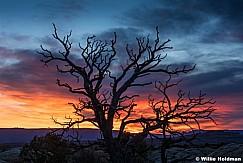 Canyonlands Sunrise 031717 2