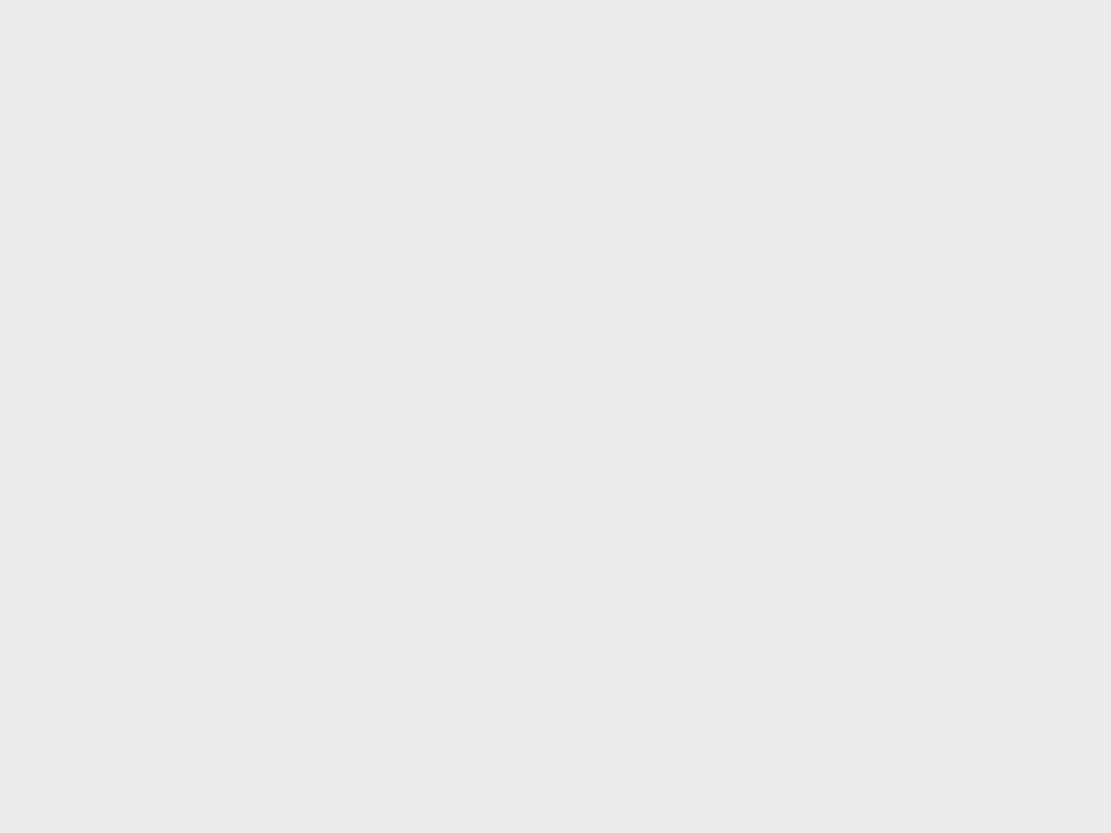 Snowey Trees Powder 010320 0918